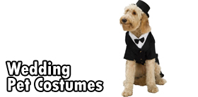 Wedding Pet Costumes